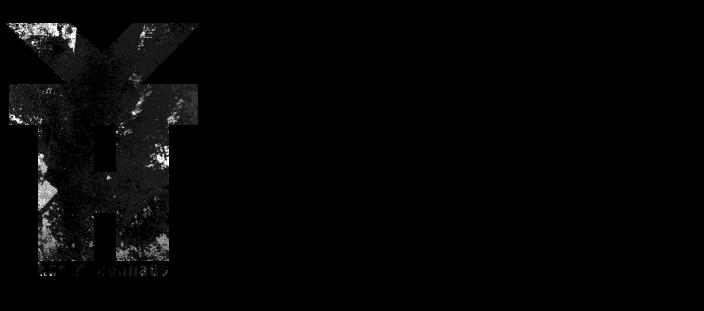 logo-vdf-013